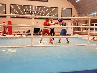 Avropa birinciliyində yarımfinalda - Qasımzadə