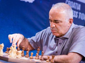 Şəhriyar Məmmədyarova uduzub, üzr istədi - Harri Kasparov